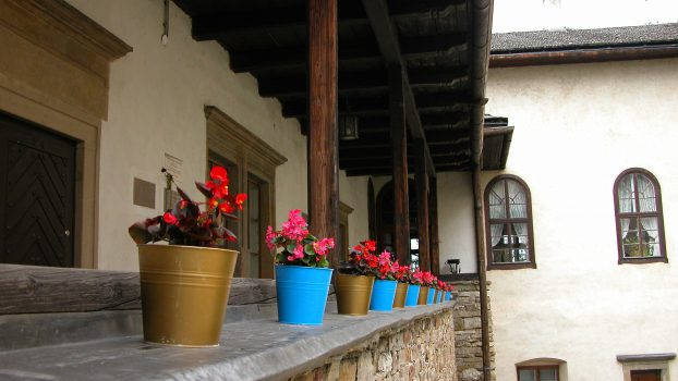 Some flowers in the courtyard of Dunajec Castle